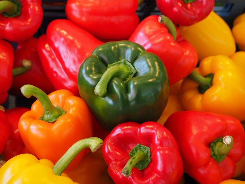 Лучшие сорта перцев для Подмосковья в теплицах: ранние, средние, поздние