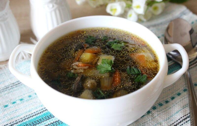 Суп грибной из свежих грибов: самые вкусные рецепты